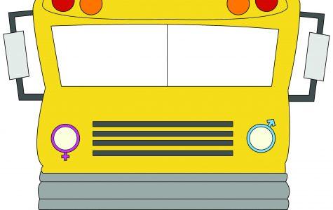Multi-gender vs. unisex schools: what determines success?