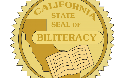 Seal of biliteracy application changes