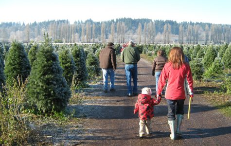 Christmas tree shopping is a tradition among many Granite Bay students