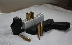 The Great Gun Debate