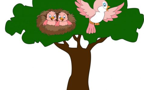 Facing the dreaded empty nest