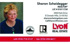 Sharon Scheidegger, Lyon Real Estate