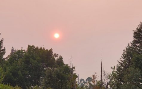 Smoke and ash from nearby wildfires has left the sky as an ominous reminder of an environmental crisis.