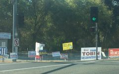 Throughout the election season, the presence of campaign signs became especially noticeable.