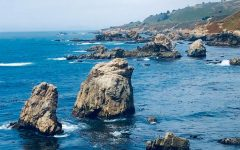 Monterey has much to offer to its visitors including numerous hikes, farms and restaurants that provide local seafood. To top it all off, the bay is also a great place to view the scenic Pacific Ocean and its marine life.