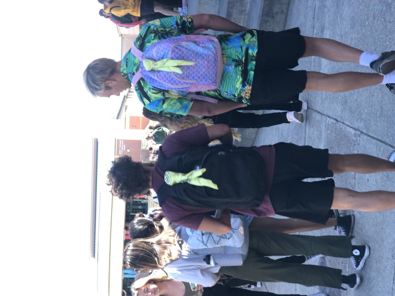 Funky+senior+backpacks
