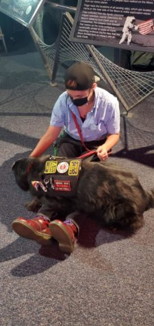 Service dog, Molly, provides deep pressure therapy for Jayde Barnett.